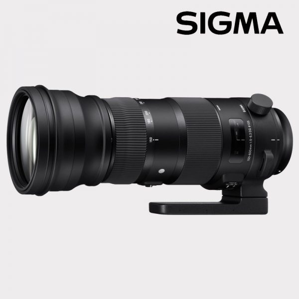 150-600mm f/5-6.3 SPORTS DG OS HSM